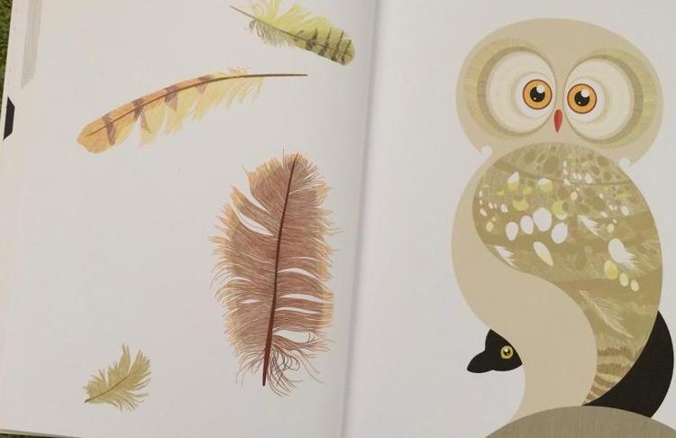 Amici di piuma libro illustrato