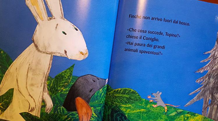 il topino che non aveva paura libro per bambini