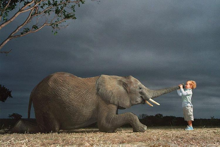 Bambino con elefante