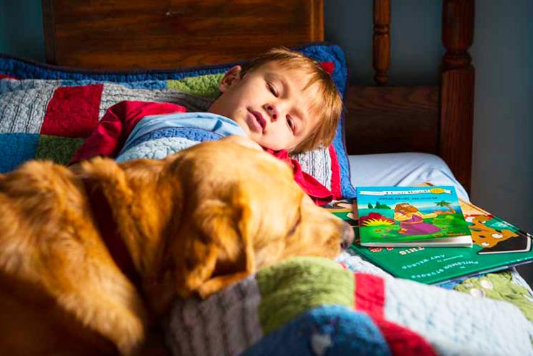 I migliori libri sugli animali per bambini