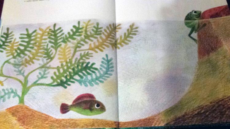 libro Un pesce è un pesce