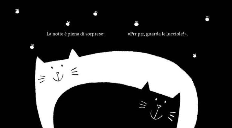 gatto nero finale