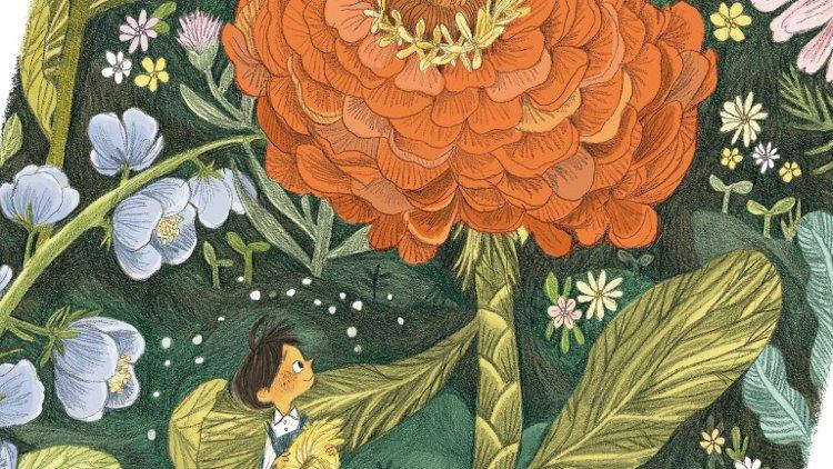 piccolo giardiniere libro