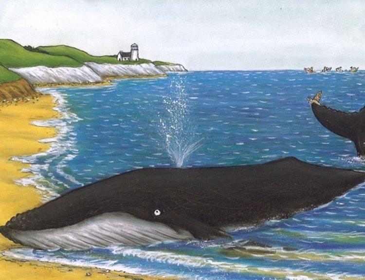 la chiocciolina e la balena bambini