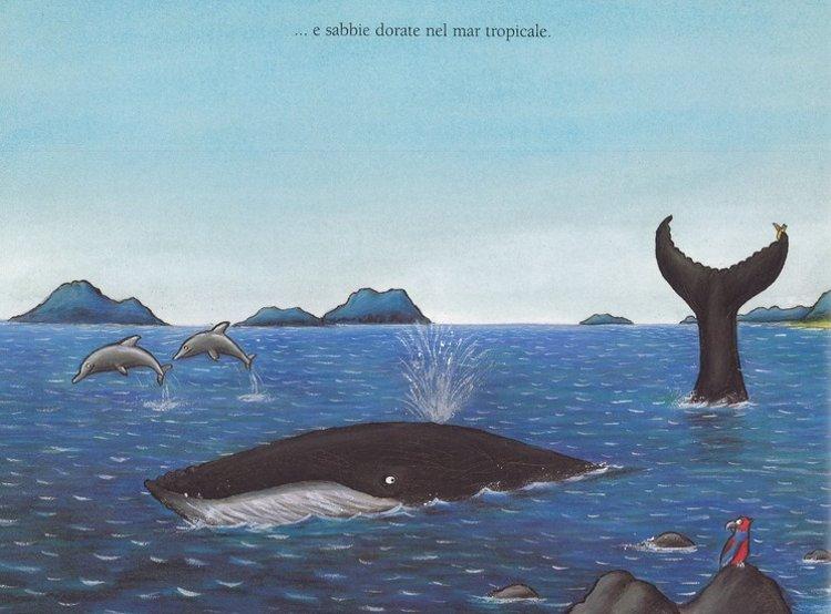 la chiocciolina e la balena libro