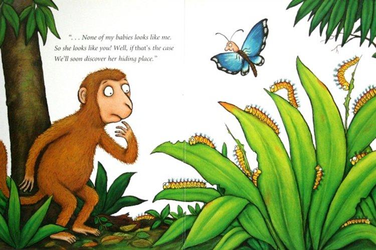 mamma monkey donaldson