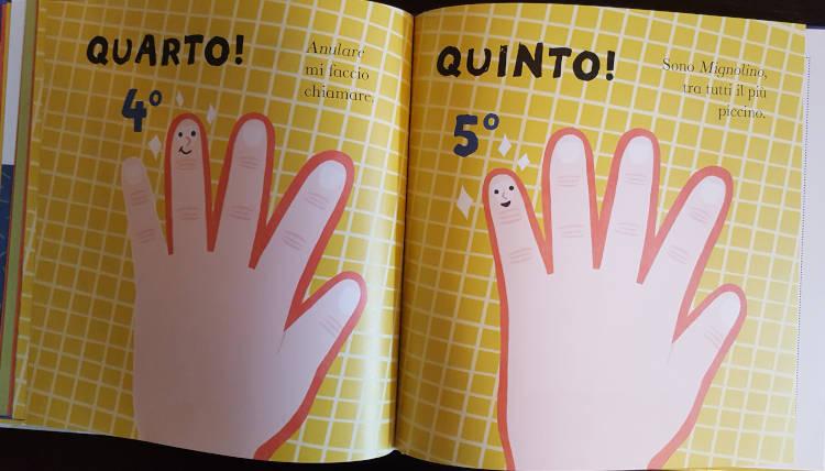 contare con le cinque dita