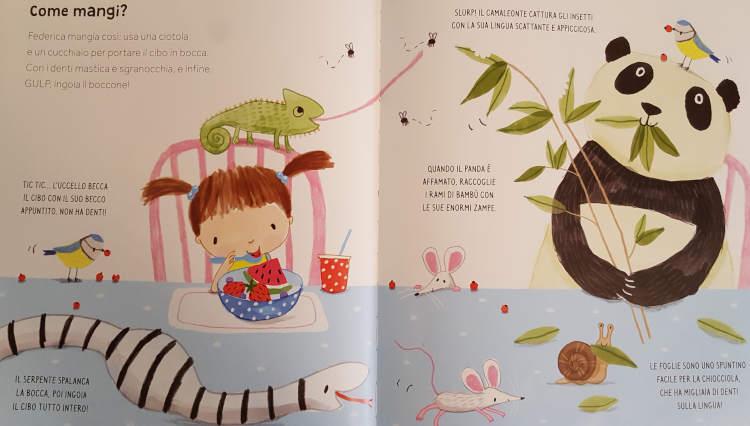 libri animali bambini così