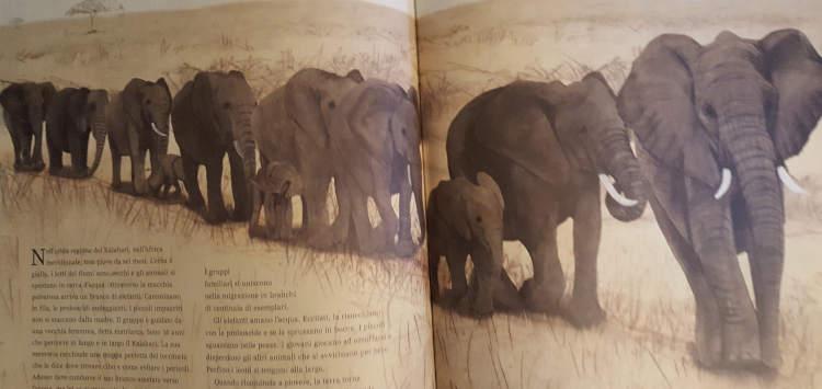 libro bambini migrazioni